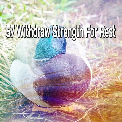 57 Withdraw Strength for Rest von Best Relaxing SPA Music