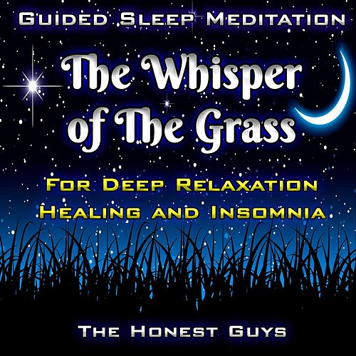 Guided Sleep Meditation: The Whisper of the Grass. for Deep Relaxation, Healing & Insomnia by The Honest Guys