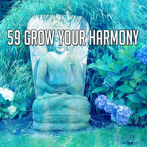 59 Grow Your Harmony by Asian Traditional Music