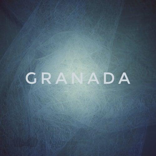 Chapter I : 02 Starter von Granada