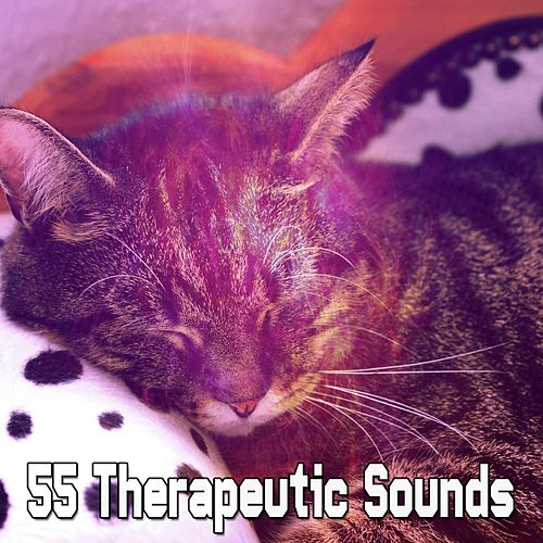 55 Therapeutic Sounds de Trouble Sleeping Music Universe