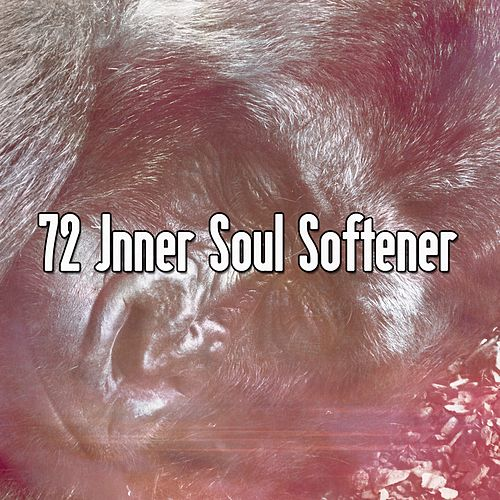 72 Inner Soul Softener de Best Relaxing SPA Music