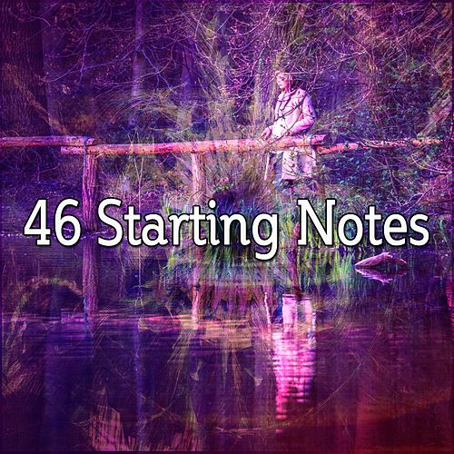 46 Starting Notes de Zen Meditate