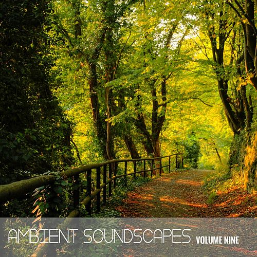 Ambient SoundScapes Vol, 9 by Various Artists