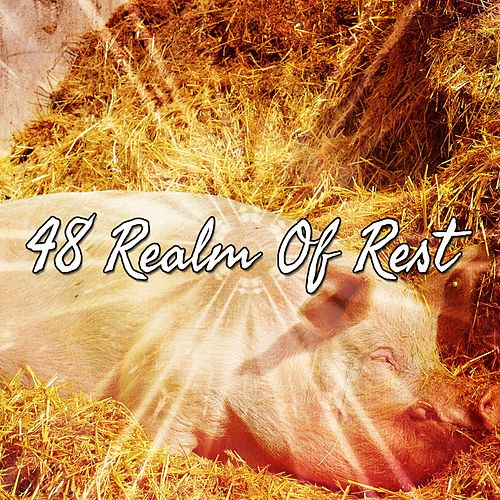 48 Realm of Rest by Relaxing Spa Music