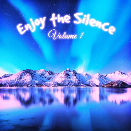 Enjoy the Silence, Vol. 1 von Various Artists