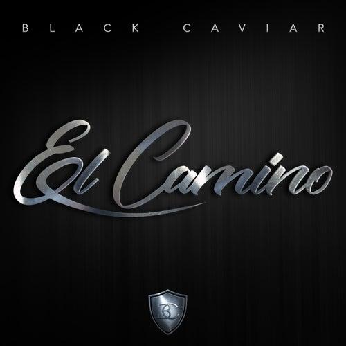 El Camino de Black Caviar