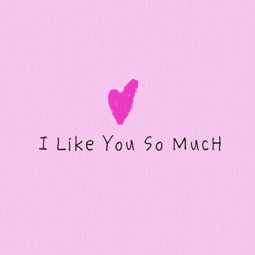 I Like You So Much de Heesami