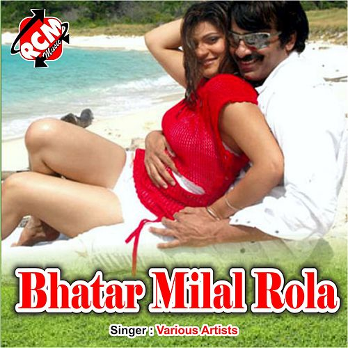 Bhatar Milal Rola de Various Artists
