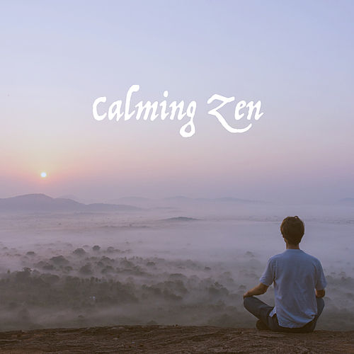 Calming Zen by Various Artists