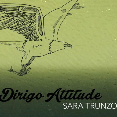 Dirigo Attitude by Sara Trunzo