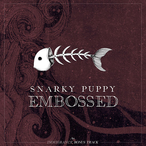 Embossed by Snarky Puppy