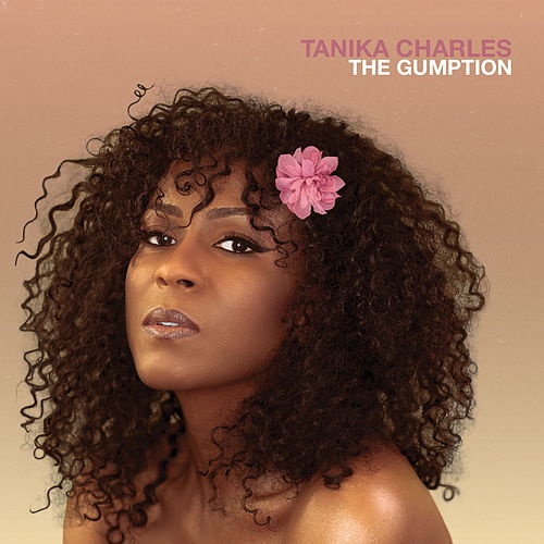 The Gumption by Tanika Charles