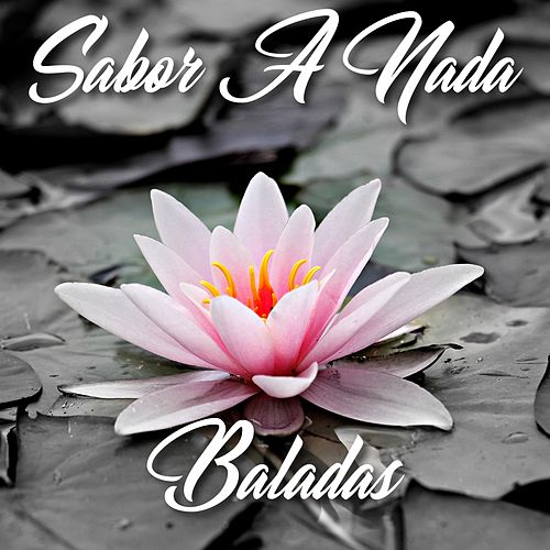 Sabor a Nada (Baladas) de Various Artists