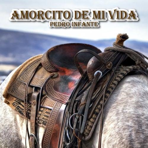 Amorcito de Mi Vida van Pedro Infante