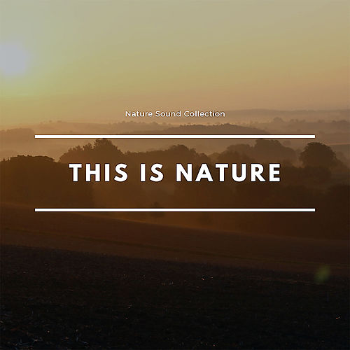 This Is Nature de Nature Sound Collection