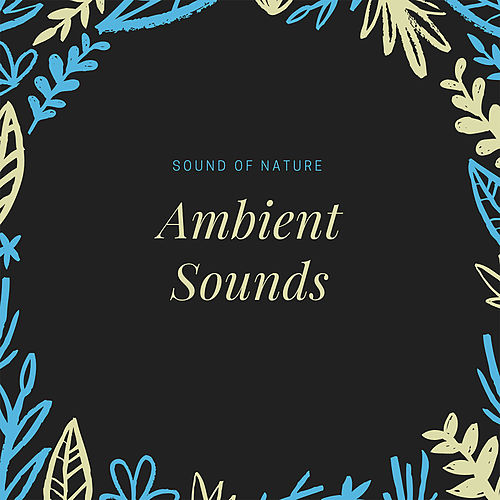 Ambient di The Sound of Nature
