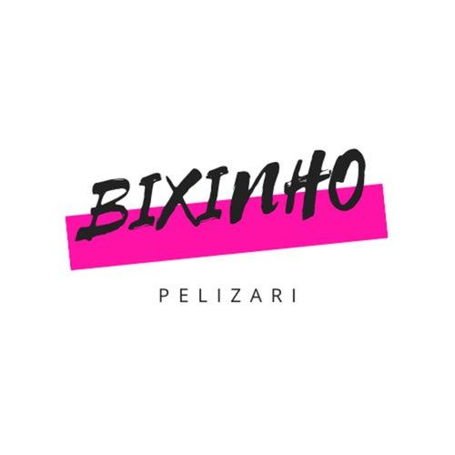 Bixinho (Acústico) von Fernando Pelizari