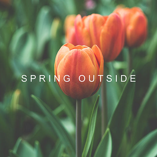 Spring Outside by Nature Sounds Relaxation: Music for Sleep, Meditation, Massage Therapy, Spa