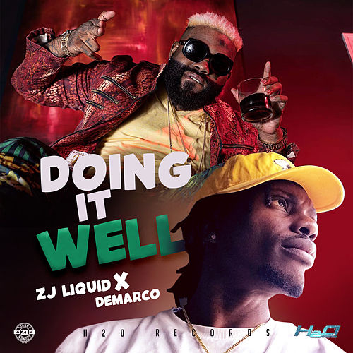 Doing it Well by Zj Liquid