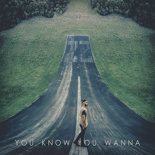 You Know You Wanna by Filmore