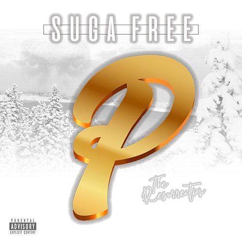 Hole in My Heart by Suga Free