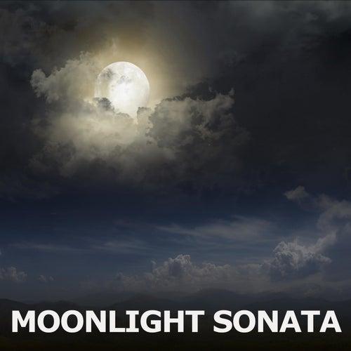 Moonlight Sonata de Moonlight Sonata