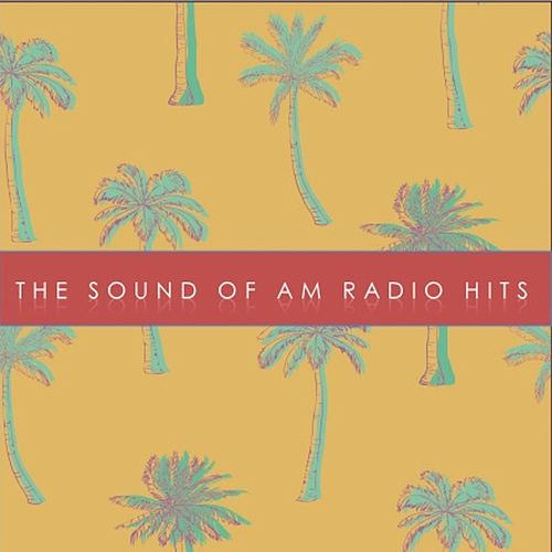 '60s: The Sound of AM Radio Hits! de Various Artists