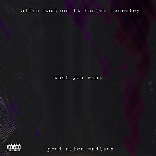 What You Want by Allen Madison