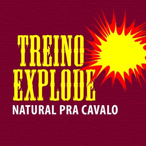 Treino Explode: Natural pra Cavalo by Guru Rap