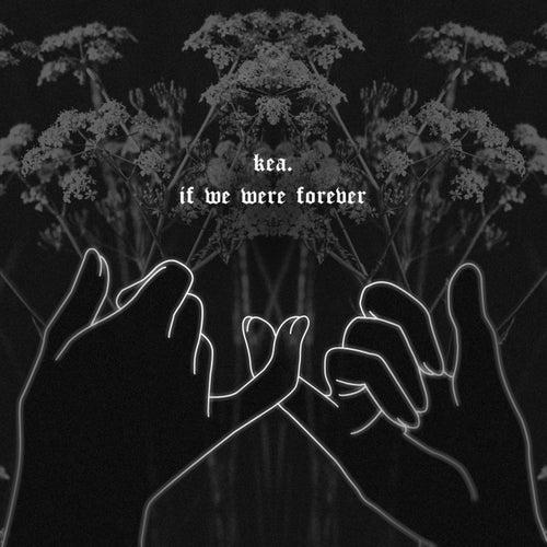 If We Were Forever de Kea