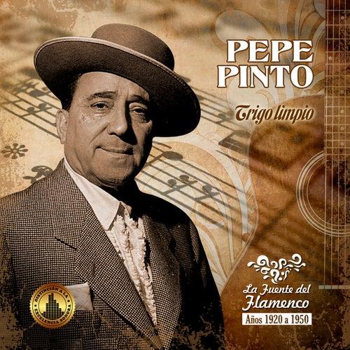 Trigo Limpio de Pepe Pinto