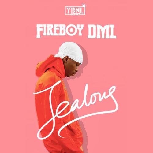 Jealous de Fireboy DML