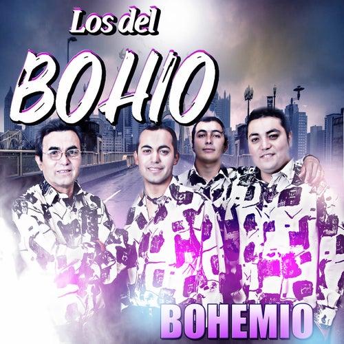 Bohemio de Los Del Bohio