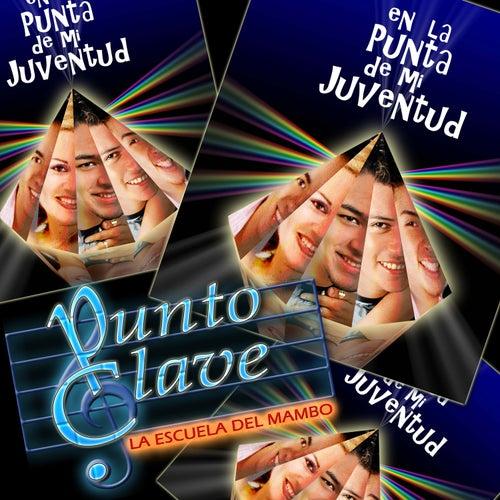En la Punta de Mi Juventud by Punto Clave