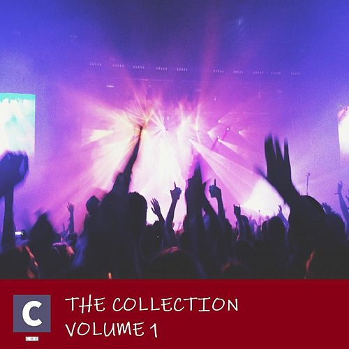 The Collection Volume 1 by Various Artists