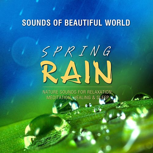 Spring Rain (Nature Sounds for Relaxation, Meditation, Healing & Sleep) by Sounds of Beautiful World