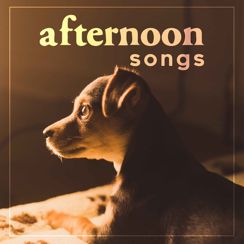 Afternoon Songs by Various Artists