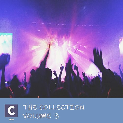 The Collection Volume 3 by Various Artists