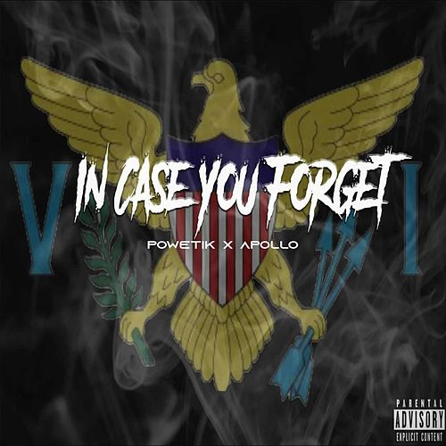 In Case You Forget by Apollo