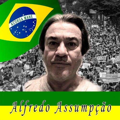 Acorda Mané by Alfredo Assumpção
