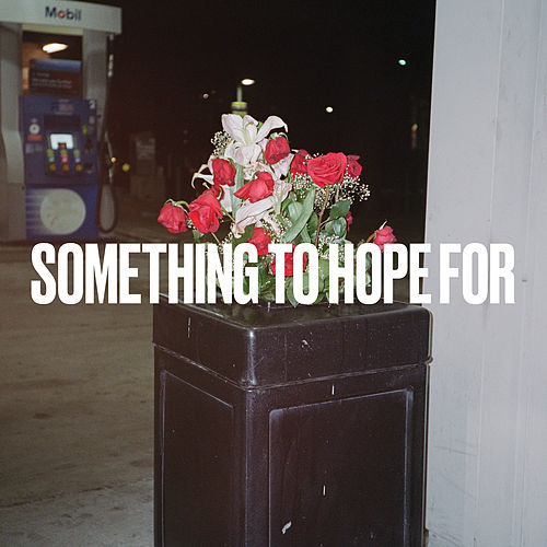 Something to Hope For von Craig Finn