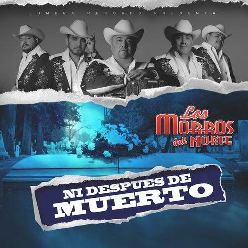 Ni Despues De Muerto by Los Morros Del Norte