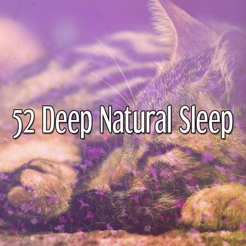 52 Deep Natural Sleep von Best Relaxing SPA Music