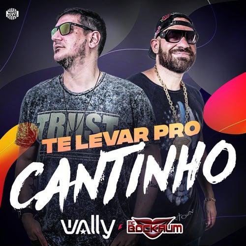 Te Levar Pro Cantinho de DJ Wally