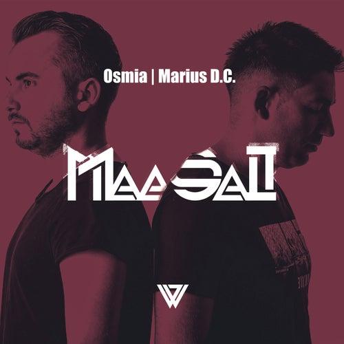Maasai (Stantin Remix) van Osmia