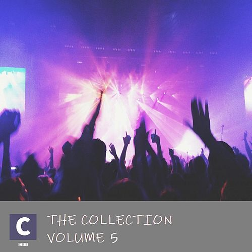 The Collection Volume 5 de Various Artists