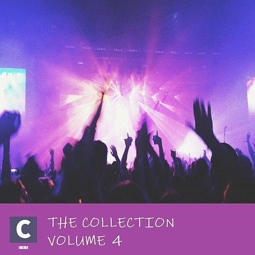 The Collection Volume 4 by Various Artists