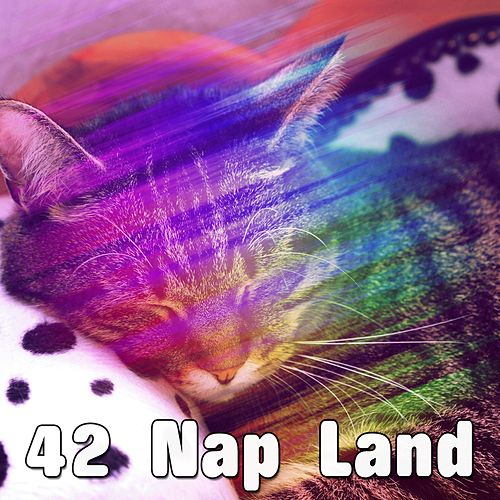 42 Nap Land by Relaxing Spa Music