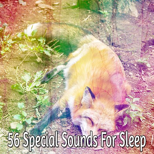 56 Special Sounds for Sleep von Rockabye Lullaby